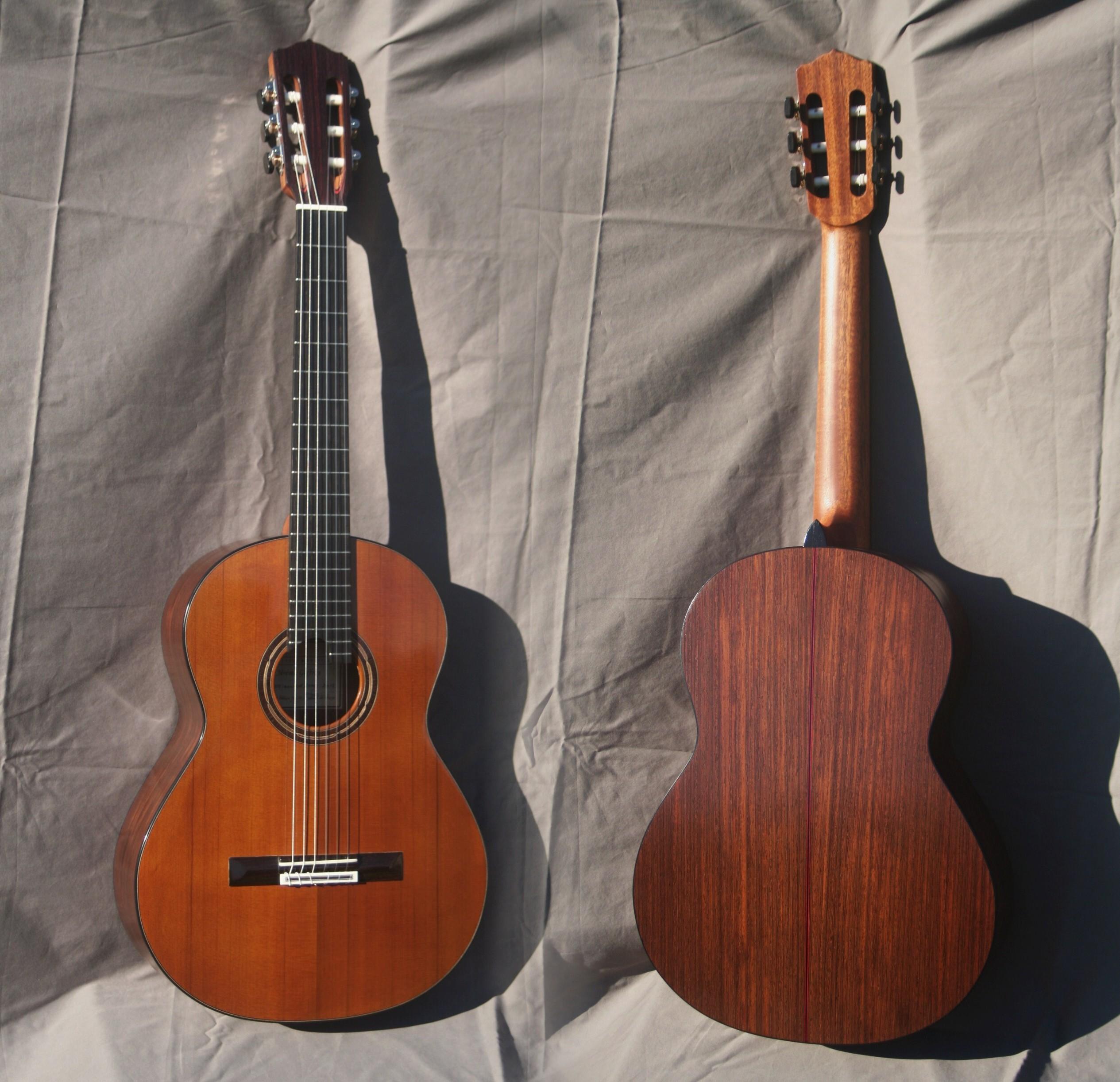 fusion guitare wengé